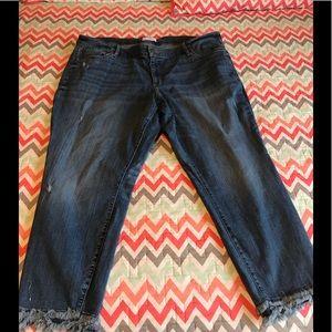 Loft plus size skinny jeans